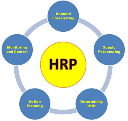 ACTION PLAN FOR THE IMPLEMENTATION OF THE HUMAN RESOURCES
